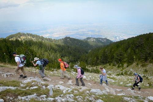 3. Entering the alpine zone_resize
