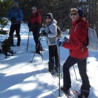 Excursionistes amb Raquetes de Neu